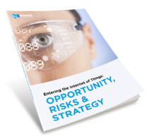 Entering IoT -Opportunity, Risk & Strategy